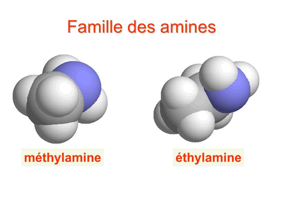 Famille des amines méthylamine éthylamine