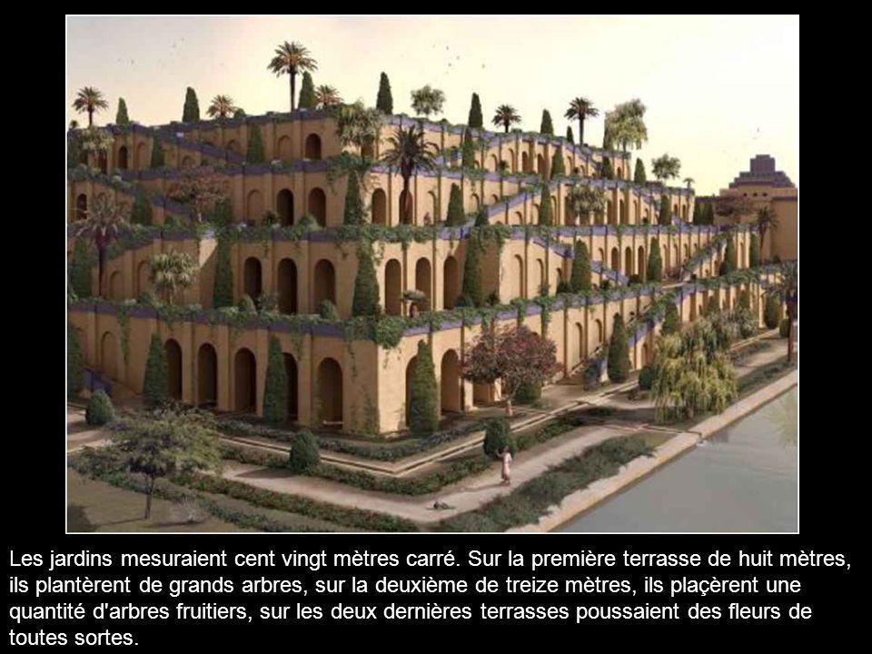 Les jardins mesuraient cent vingt mètres carré