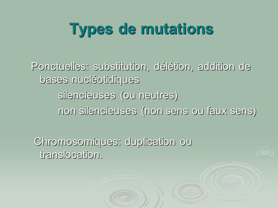 Types de mutations Ponctuelles: substitution, délétion, addition de bases nucléotidiques. silencieuses (ou neutres)