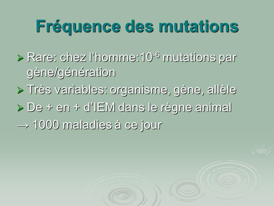Fréquence des mutations