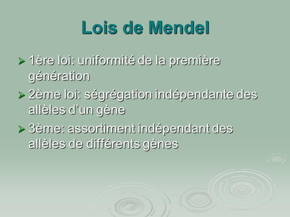 Lois de Mendel 1ère loi: uniformité de la première génération