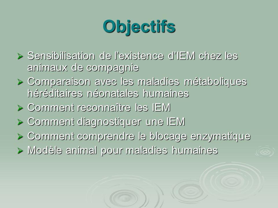 Objectifs Sensibilisation de l'existence d'IEM chez les animaux de compagnie.