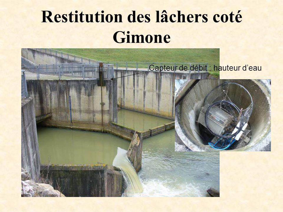 Restitution des lâchers coté Gimone
