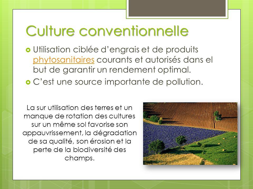 Culture conventionnelle