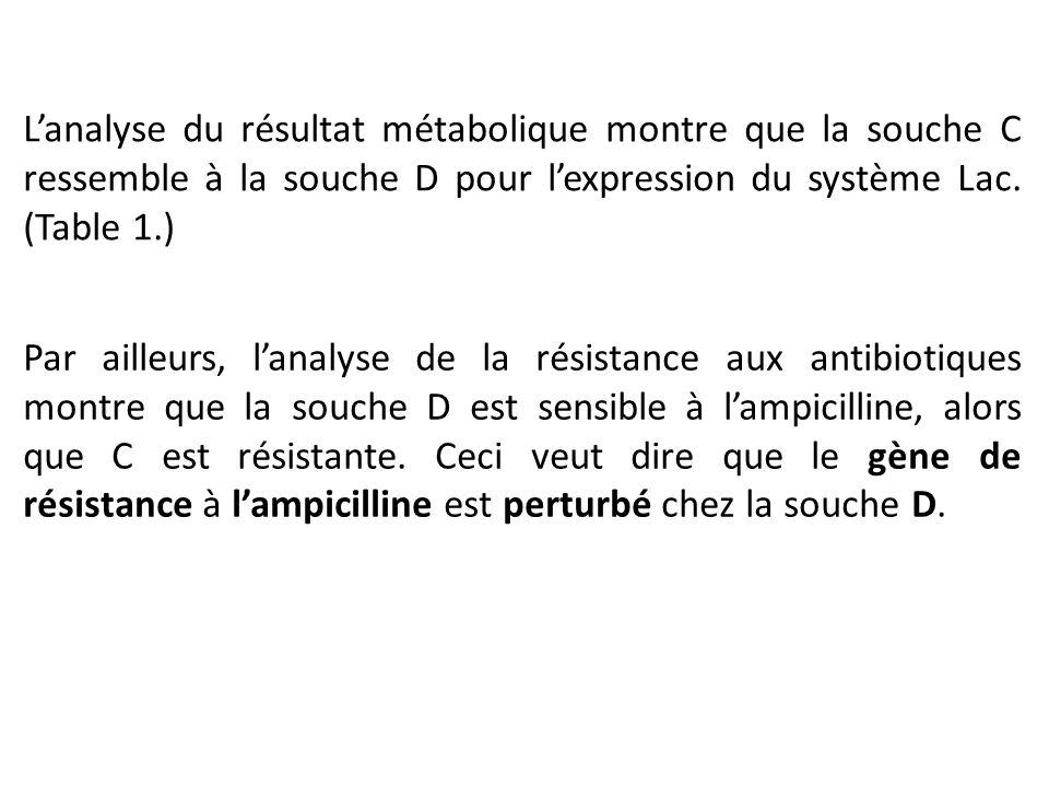 L'analyse du résultat métabolique montre que la souche C ressemble à la souche D pour l'expression du système Lac. (Table 1.)