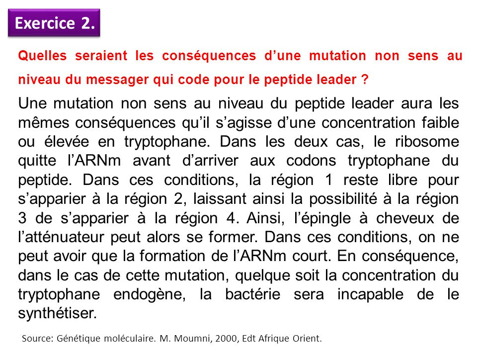 Exercice 2. Quelles seraient les conséquences d'une mutation non sens au niveau du messager qui code pour le peptide leader