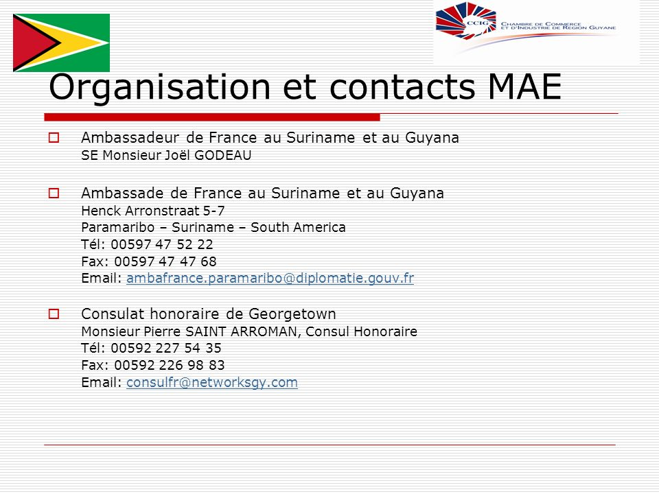 Organisation et contacts MAE