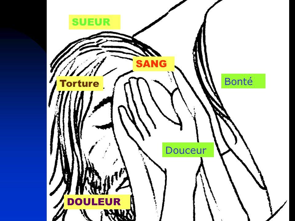 SUEUR SANG Bonté Torture Douceur DOULEUR