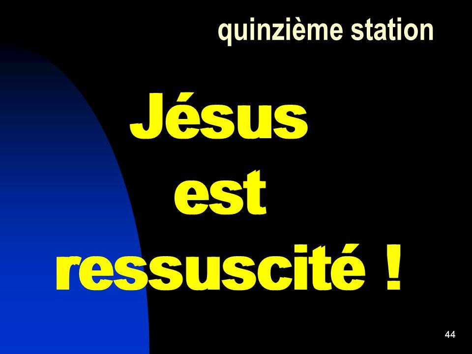 Jésus est ressuscité ! Jésus est ressuscité !