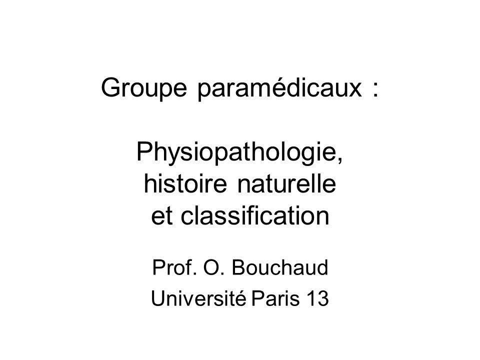 Prof. O. Bouchaud Université Paris 13