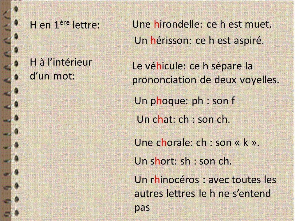 H en 1ère lettre: Une hirondelle: ce h est muet. Un hérisson: ce h est aspiré. H à l'intérieur d'un mot: