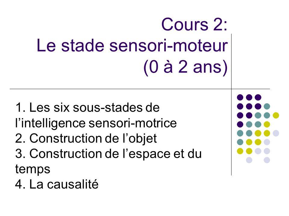 Cours 2: Le stade sensori-moteur (0 à 2 ans)