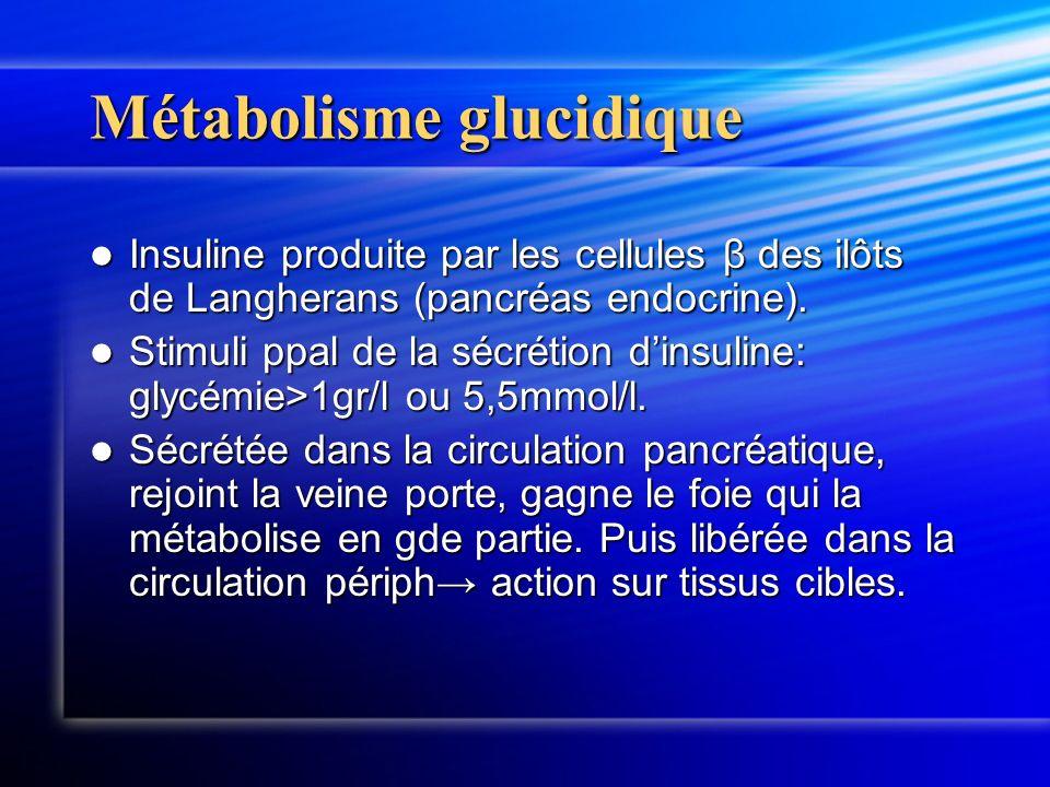 Métabolisme glucidique