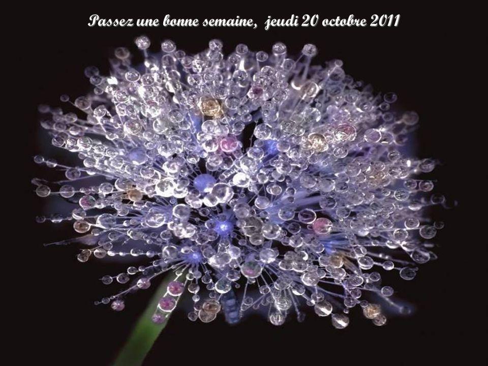 Passez une bonne semaine, jeudi 20 octobre 2011