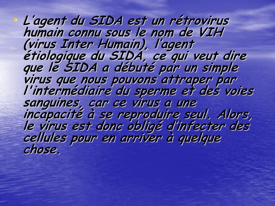 L'agent du SIDA est un rétrovirus humain connu sous le nom de VIH (virus Inter Humain), l'agent étiologique du SIDA, ce qui veut dire que le SIDA a débuté par un simple virus que nous pouvons attraper par l intermédiaire du sperme et des voies sanguines, car ce virus a une incapacité à se reproduire seul.