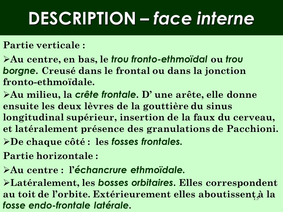 DESCRIPTION – face interne