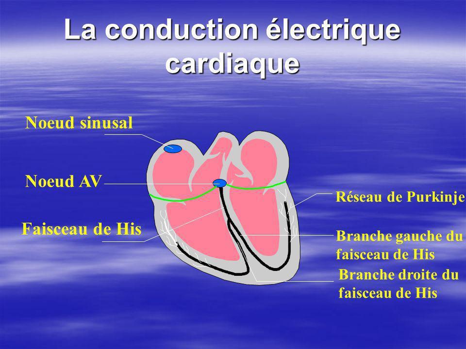 La conduction électrique cardiaque