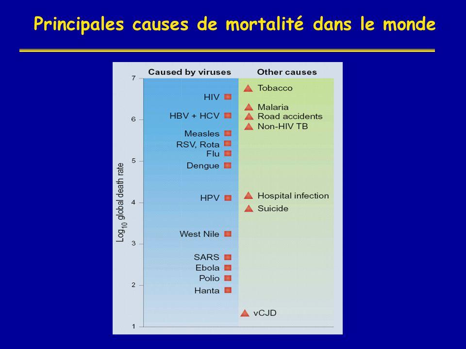 Principales causes de mortalité dans le monde