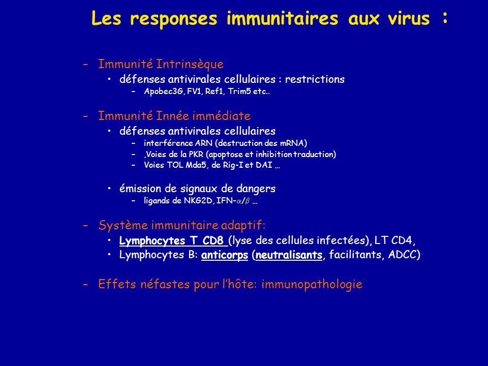 Les responses immunitaires aux virus :