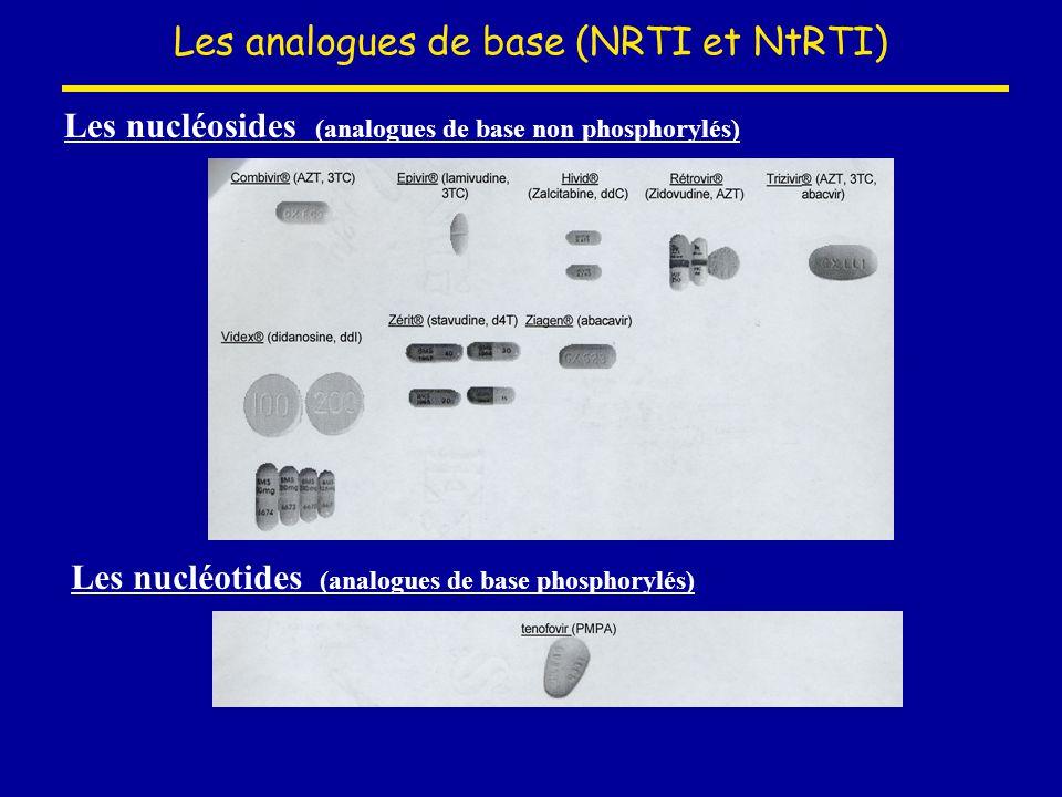 Les analogues de base (NRTI et NtRTI)