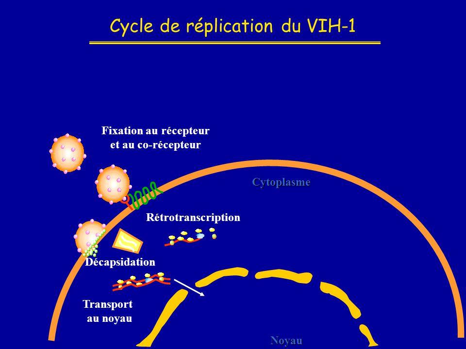 Cycle de réplication du VIH-1