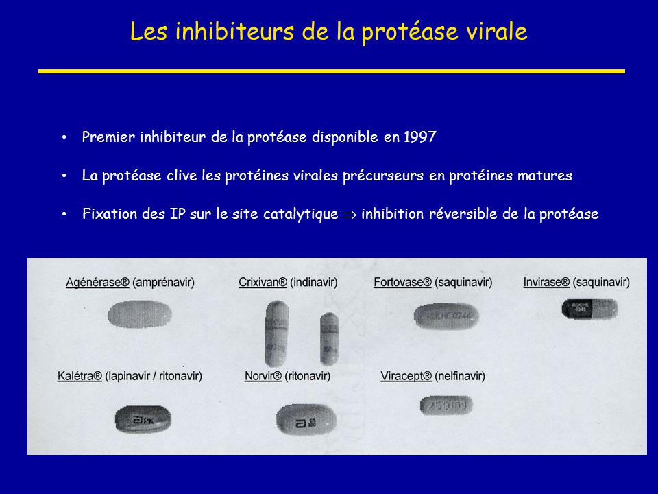 Les inhibiteurs de la protéase virale