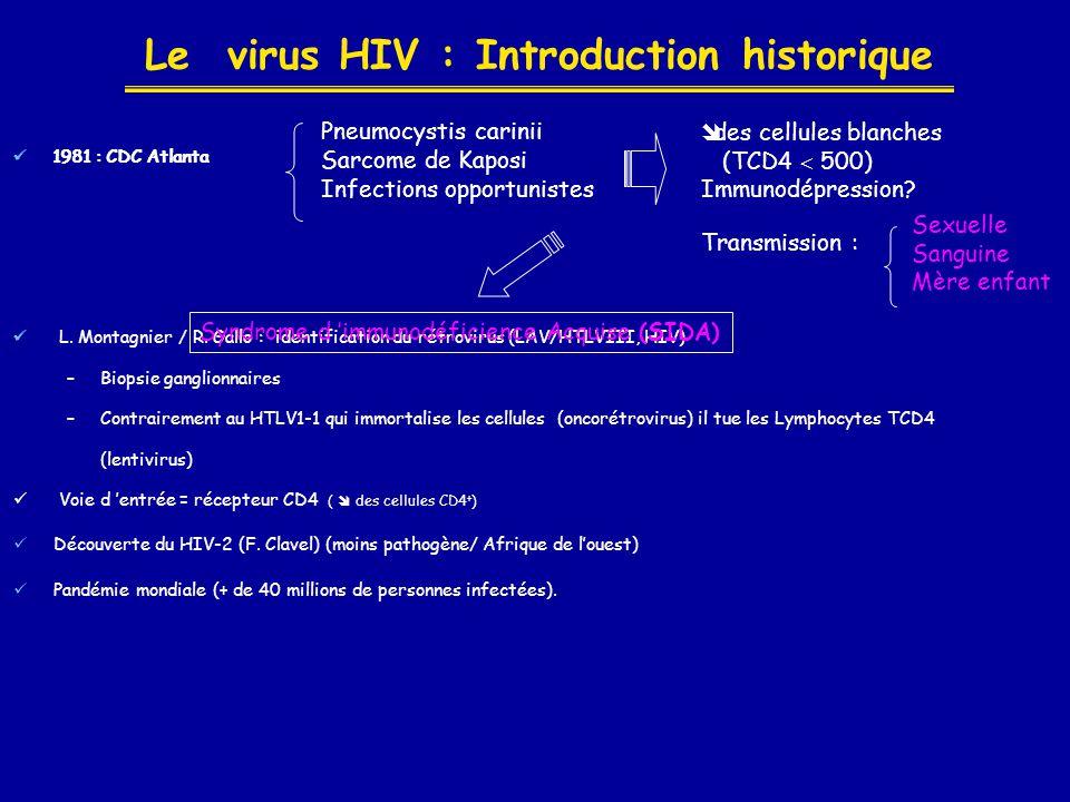 Le virus HIV : Introduction historique