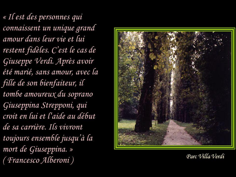 « Il est des personnes qui connaissent un unique grand amour dans leur vie et lui restent fidèles. C'est le cas de Giuseppe Verdi. Après avoir été marié, sans amour, avec la fille de son bienfaiteur, il tombe amoureux du soprano Giuseppina Strepponi, qui croit en lui et l'aide au début de sa carrière. Ils vivront toujours ensemble jusqu'à la mort de Giuseppina. » ( Francesco Alberoni )