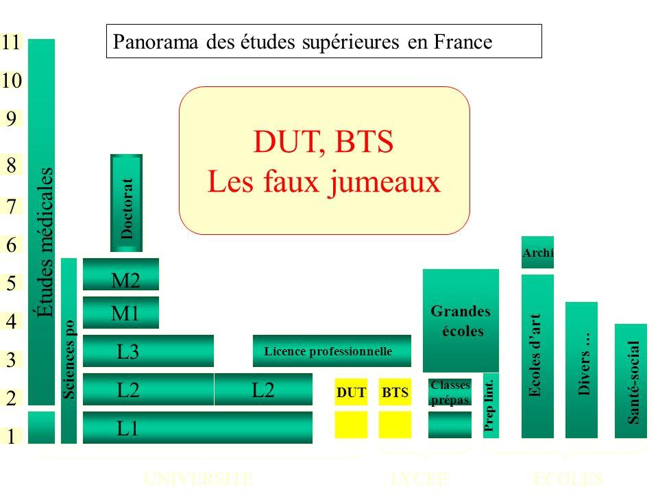 DUT, BTS Les faux jumeaux Panorama des études supérieures en France 11