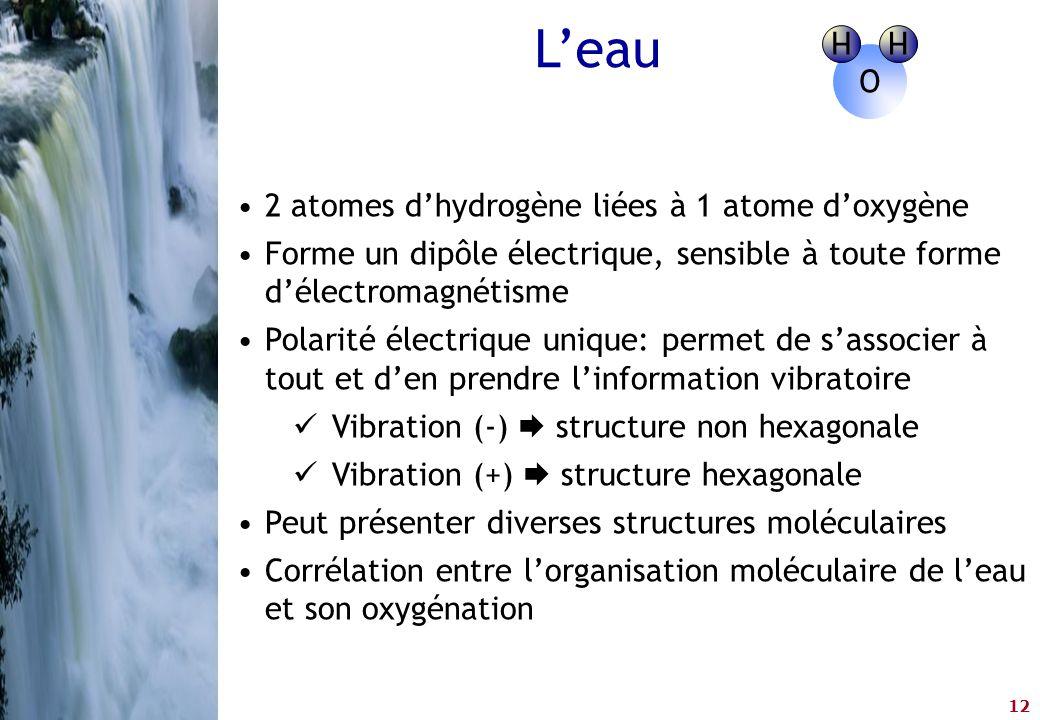 L'eau H O 2 atomes d'hydrogène liées à 1 atome d'oxygène