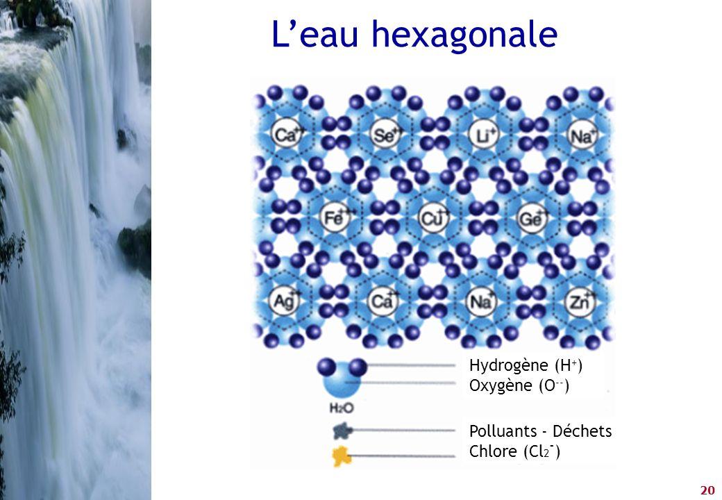 L'eau hexagonale Hydrogène (H+) Oxygène (O--) Polluants - Déchets