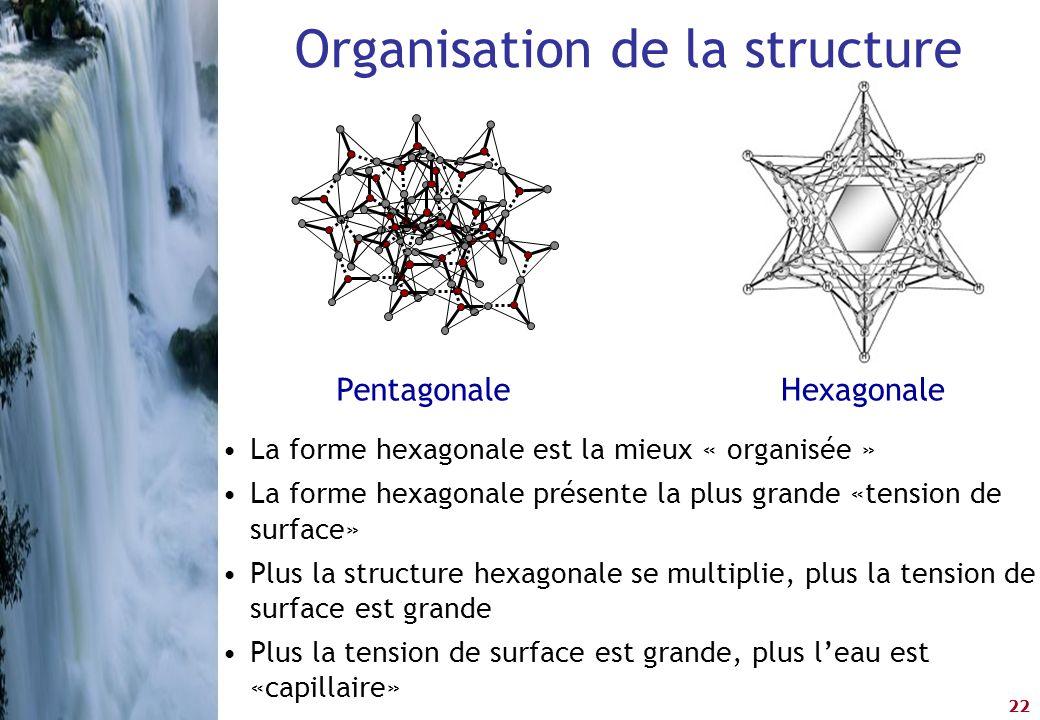 Organisation de la structure