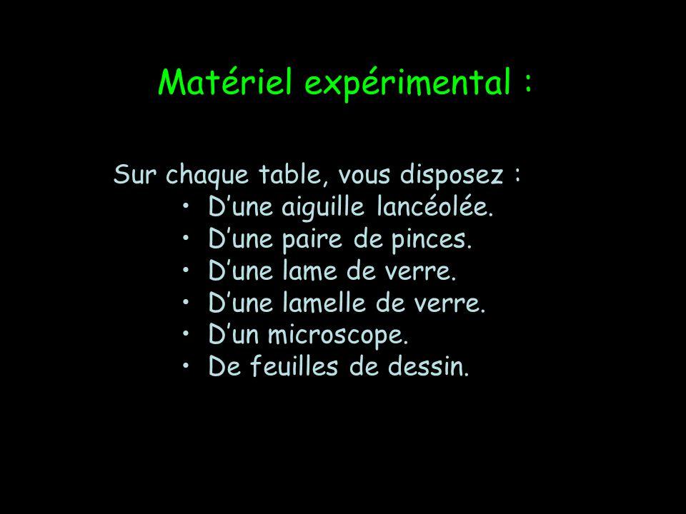 Matériel expérimental :