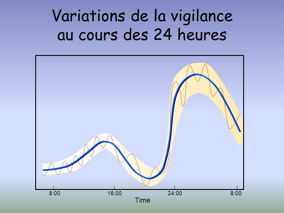 Variations de la vigilance au cours des 24 heures
