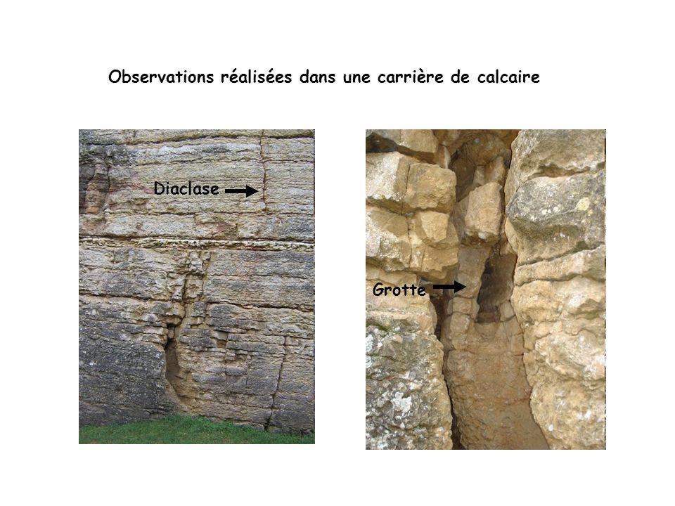 Observations réalisées dans une carrière de calcaire