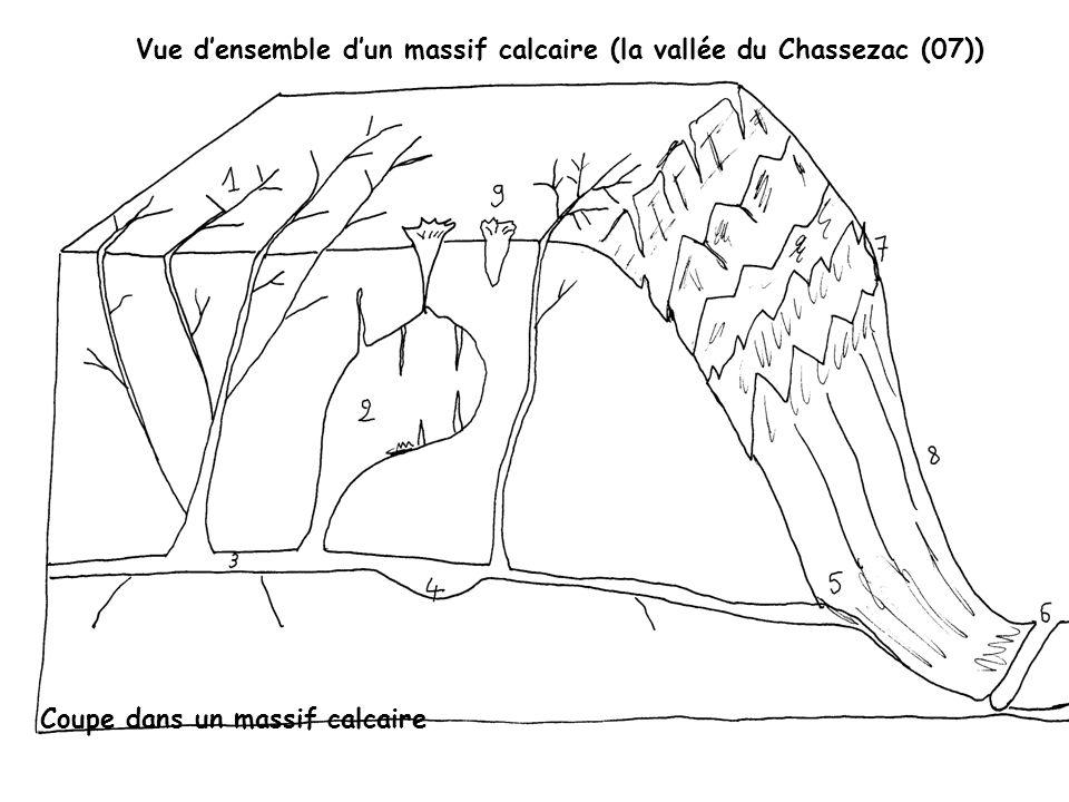 Vue d'ensemble d'un massif calcaire (la vallée du Chassezac (07))