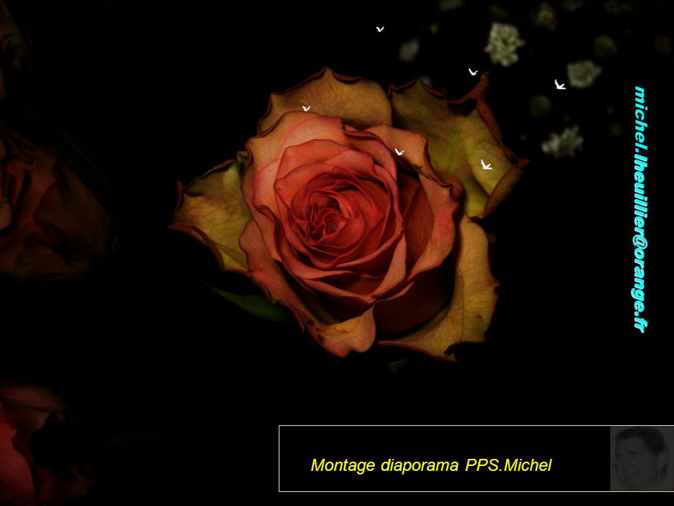 Montage diaporama PPS.Michel