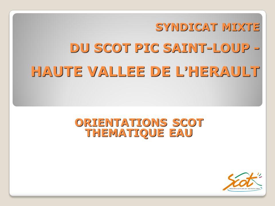 SYNDICAT MIXTE DU SCOT PIC SAINT-LOUP - HAUTE VALLEE DE L'HERAULT
