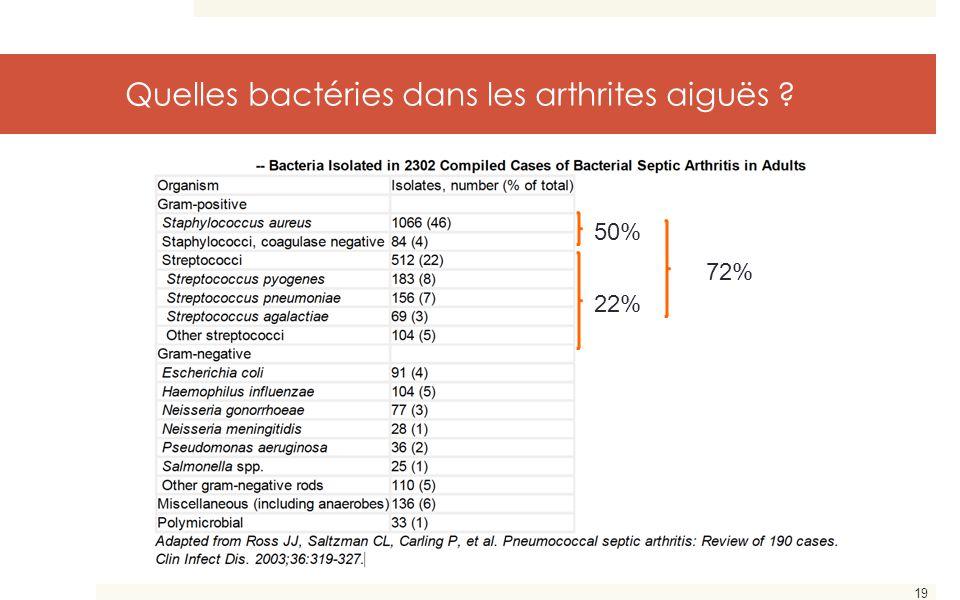 Quelles bactéries dans les arthrites aiguës