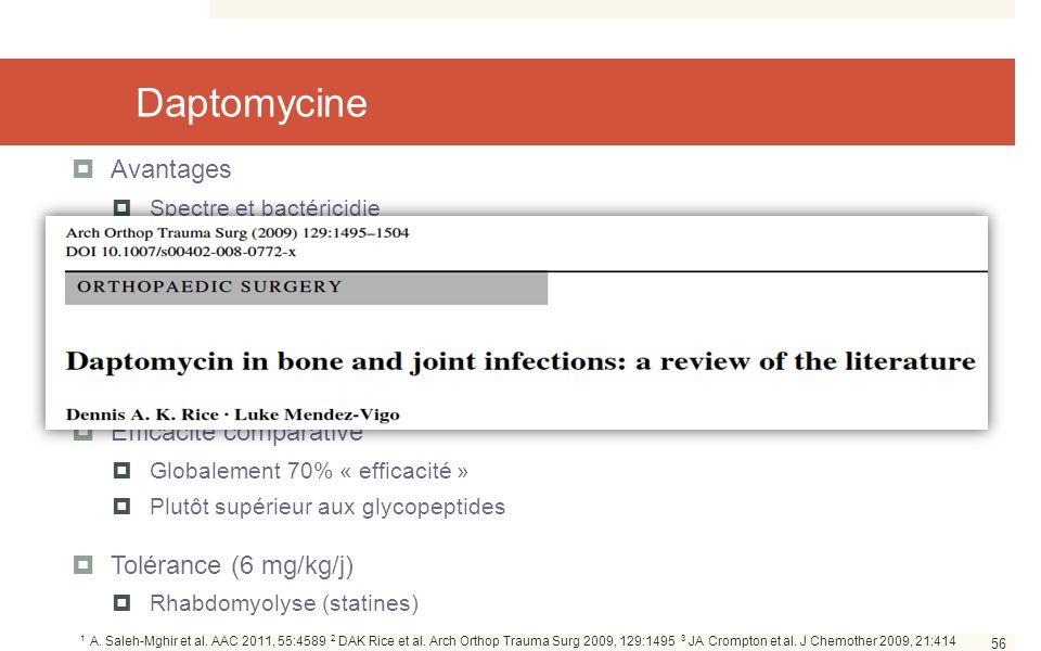 Daptomycine Avantages Expérience chez l'Homme Efficacité comparative