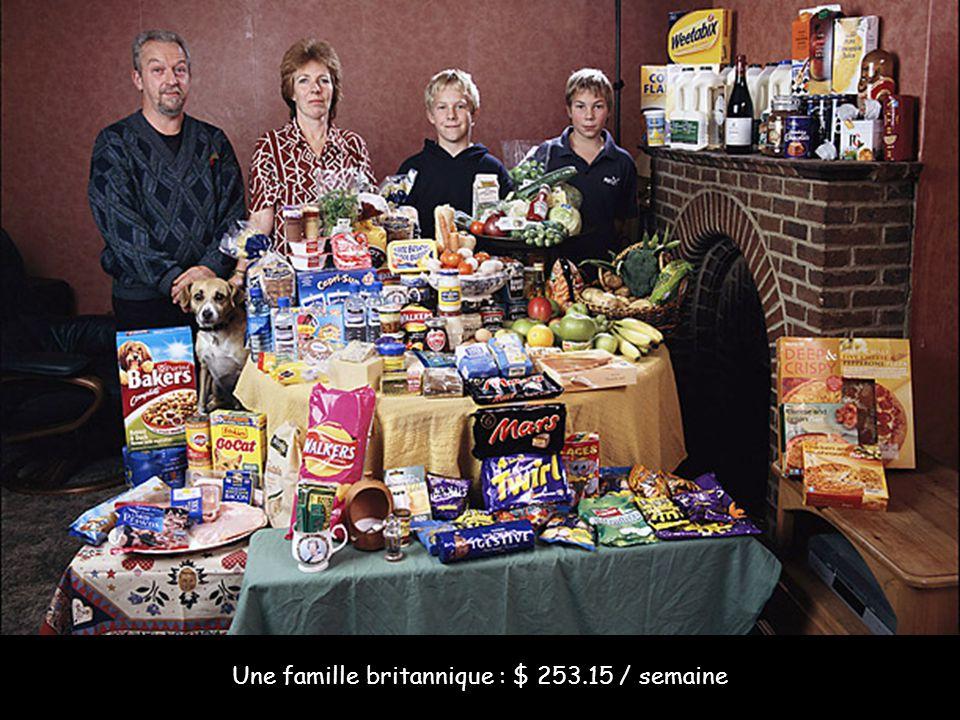Une famille britannique : $ 253.15 / semaine