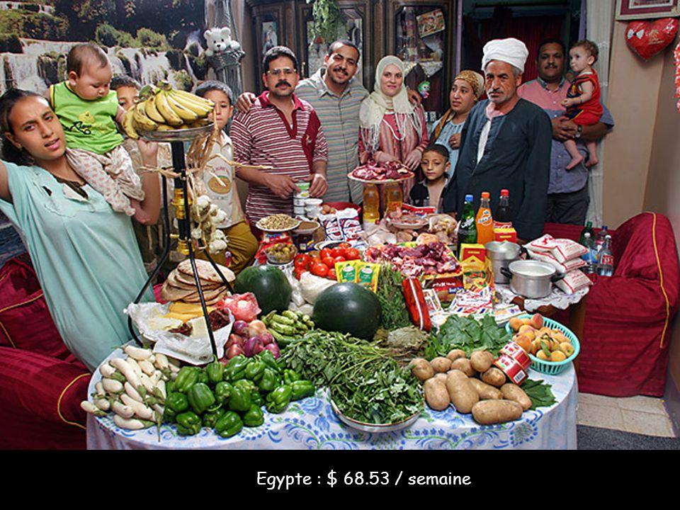 Egypte : $ 68.53 / semaine