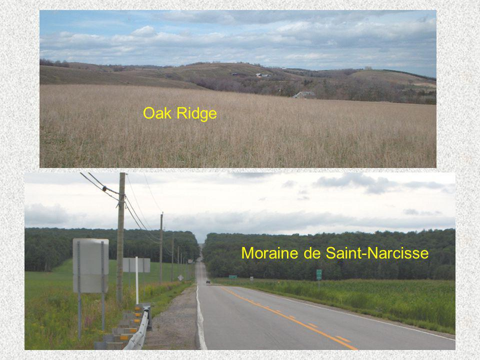 Oak Ridge Moraine de Saint-Narcisse