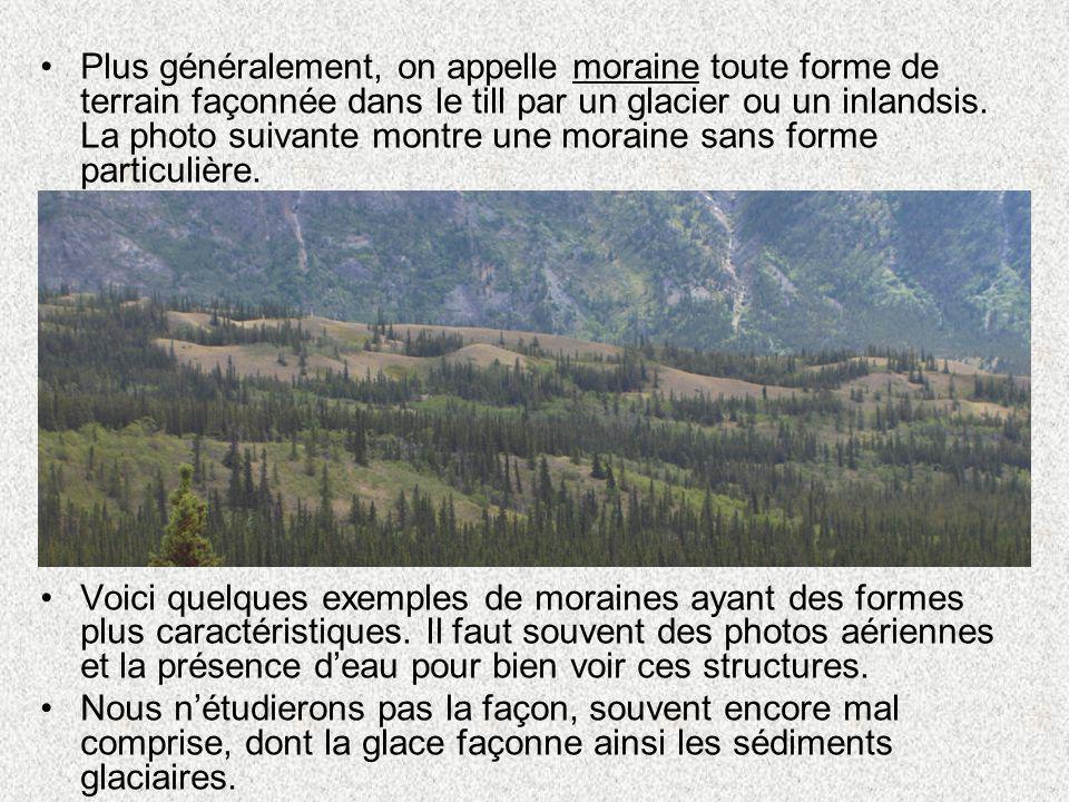 Plus généralement, on appelle moraine toute forme de terrain façonnée dans le till par un glacier ou un inlandsis. La photo suivante montre une moraine sans forme particulière.