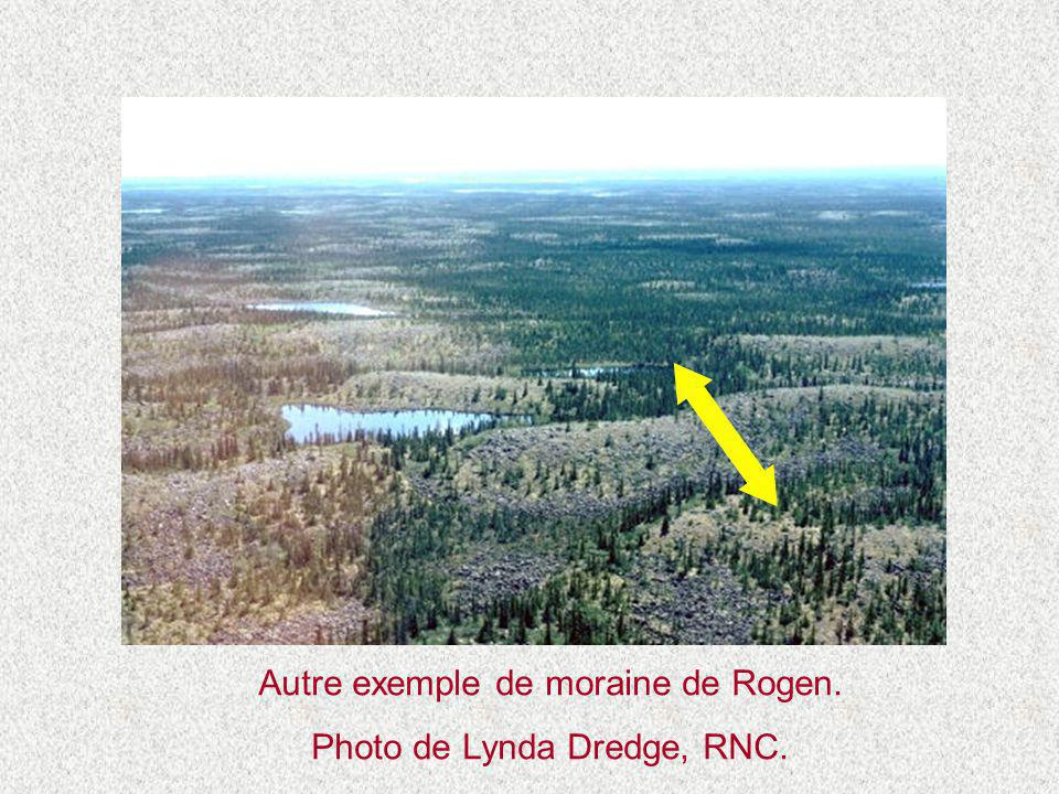 Autre exemple de moraine de Rogen. Photo de Lynda Dredge, RNC.