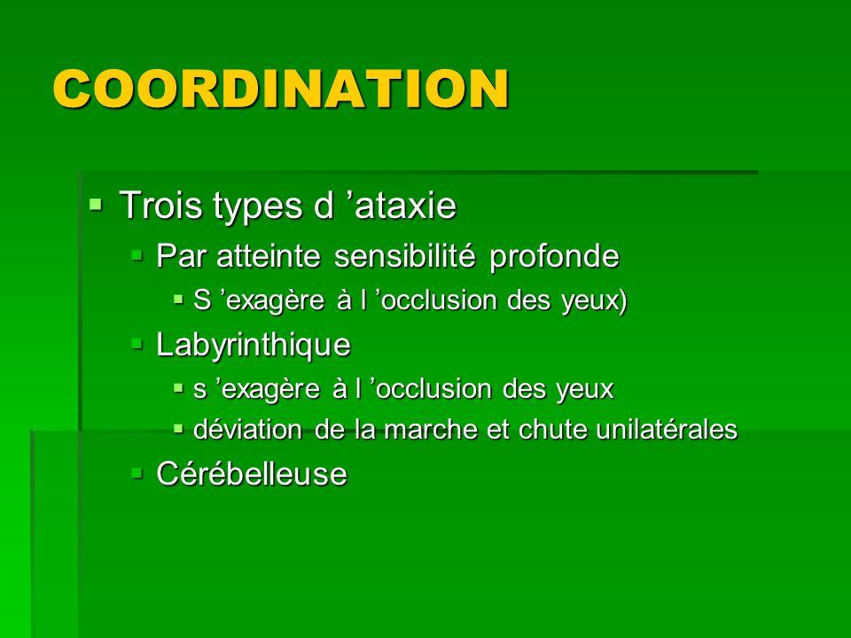 COORDINATION Trois types d 'ataxie Par atteinte sensibilité profonde