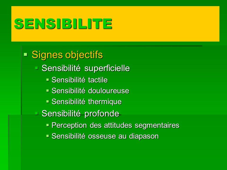 SENSIBILITE Signes objectifs Sensibilité superficielle