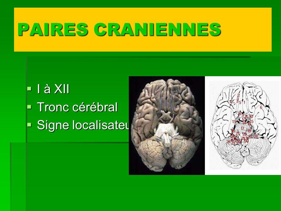 PAIRES CRANIENNES I à XII Tronc cérébral Signe localisateur