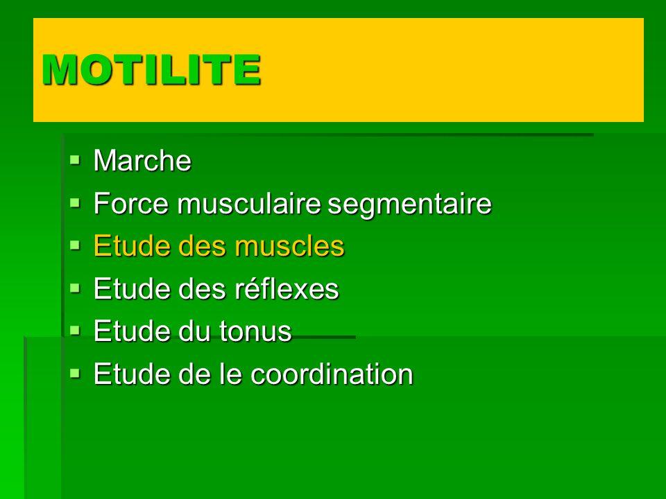 MOTILITE Marche Force musculaire segmentaire Etude des muscles