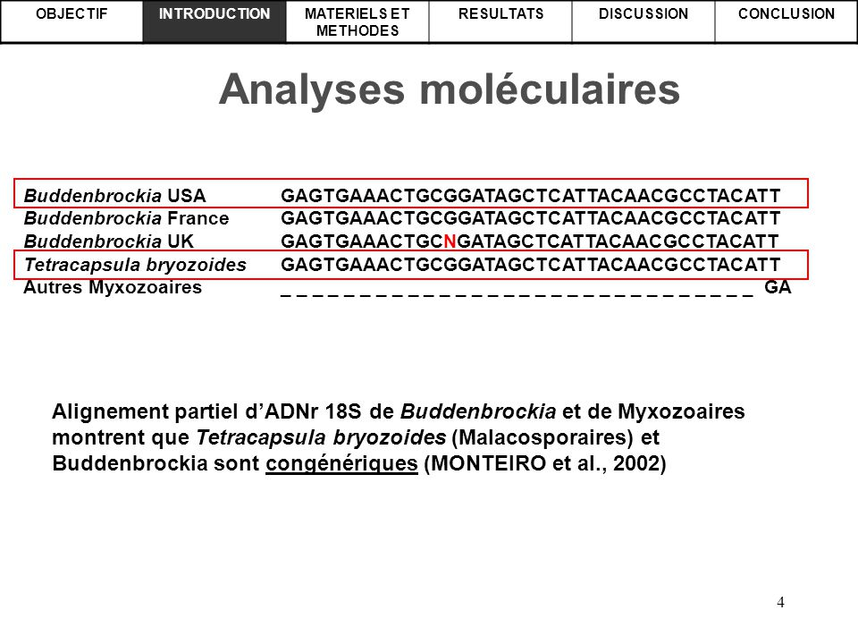 Analyses moléculaires